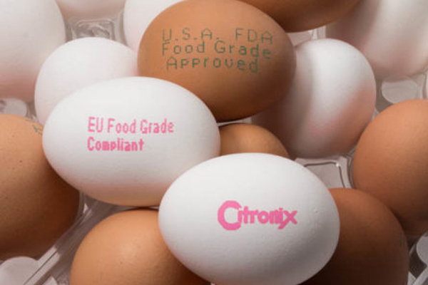 Tecnologia Impressão em Ovos